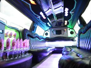 palm-beach-pink-limousine1
