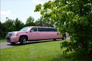 rent-pink-limo-miami